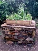 """bug hotel 2 • <a style=""""font-size:0.8em;"""" href=""""http://www.flickr.com/photos/99468393@N08/19871682768/"""" target=""""_blank"""">View on Flickr</a>"""